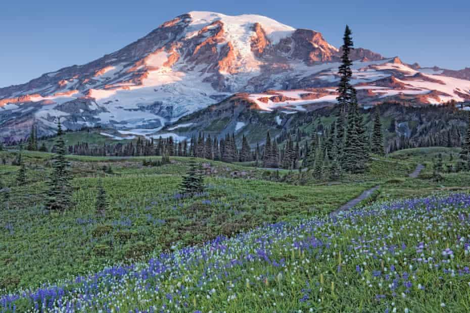 The Wonderland Trail passes through Washington's Mount Rainier National Park and the Mazama Ridge Meadows in summer bloom.