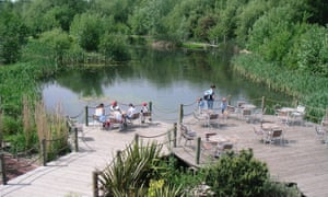 People sit at waterside tables overlooking a forest at Conkers Waterside, Derbyshire.