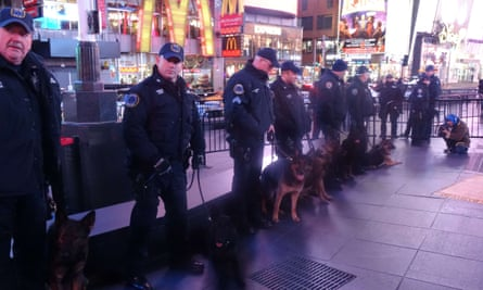 police dogs at concert times square nyc
