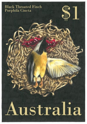 a finch on a postage stamp