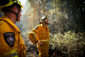 """Tasmania Fire Service officers Simon Pilkington and Darren McGinniss looking out for """"widow makers"""", dangerous trees in the forests surroundings the Tahune AirWalk"""
