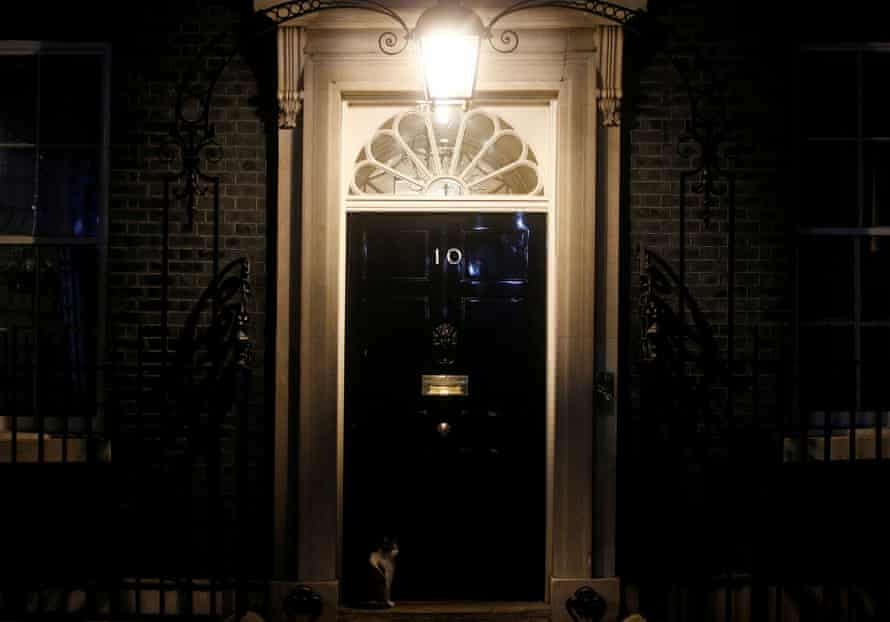 Larry the cat sits in front of 10 Downing Street, 5 April after Boris Johnson was admitted to hospital for tests