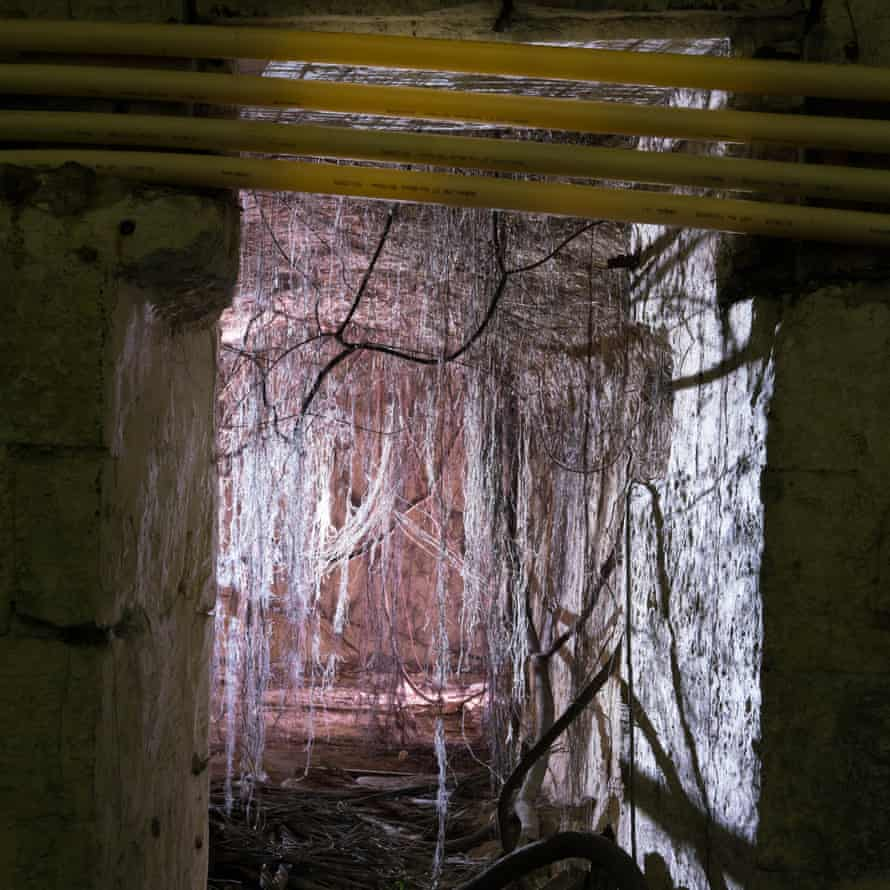 Fibre Optic Cables stretching over a second world war bunker.