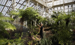 Kew Gardens ' newly-restored Temperate House