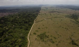 A deforested area near Novo Progresso, in Brazil's northern state of Para, pictured in 2009