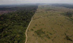 A deforested area is seen near Novo Progresso, in Brazil's northern state of Para.