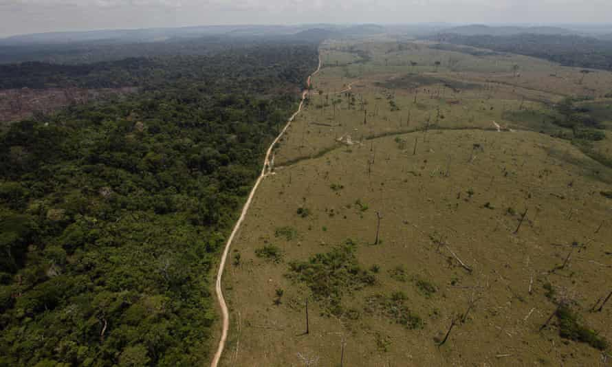 Deforestation in Brazil's Para state. Stripping land wholesale, for uses such as cattle farms and coffee plantations, can affect the climate.
