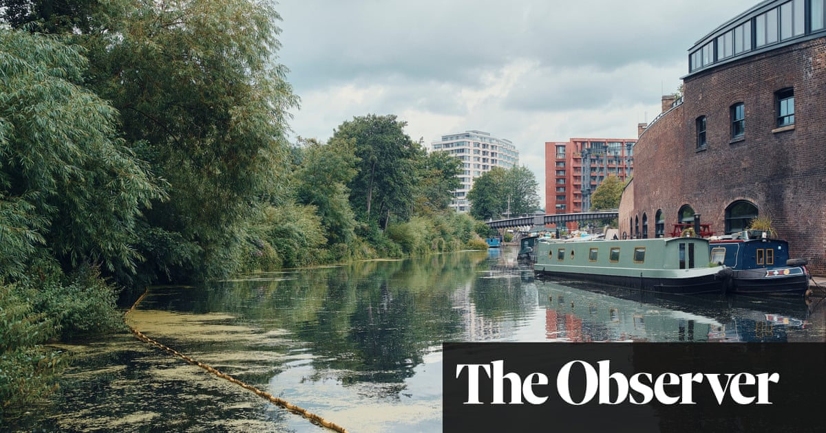 How Camley Street brought nature to the heart of the capital