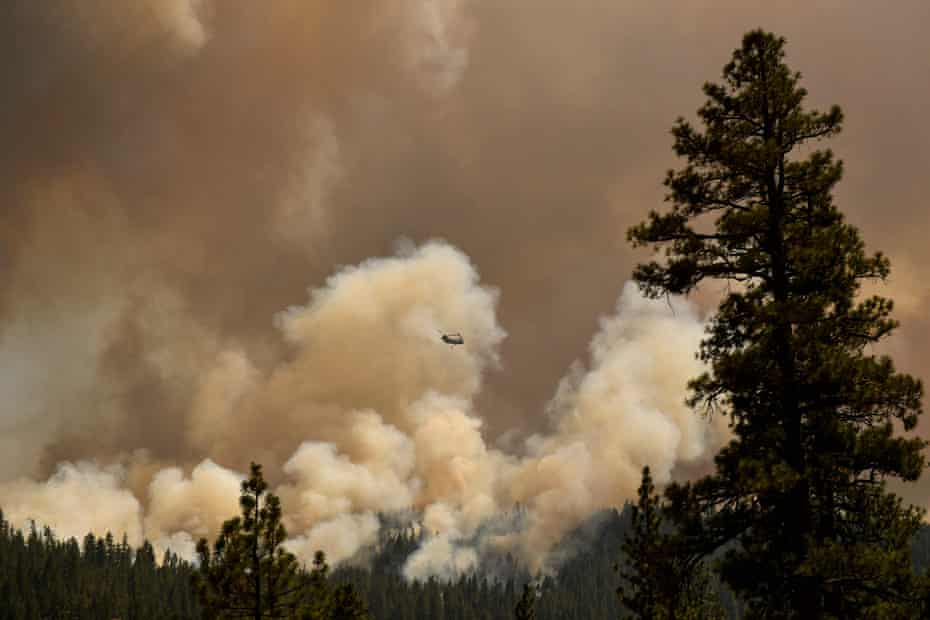 A firefighting helicopter flies past smoke plumes after making a water drop near Susanville. The findings come as fires continue to scorch California.