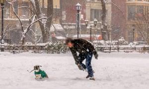 Snowy gambol, Washington Square, New York City, last week.
