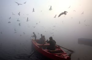A boy feeds seagulls from a boat in Delhi, India