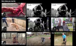 pixellated version Page full of dogfighting videos.