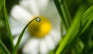 Through a Water Droplet, Powys, by Mairi Eyres – the overall youth winner