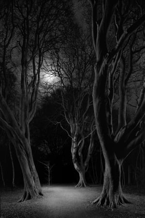 """Silver path, 2021Goodall says: """"I like the ideas in classical fairytales that use dark threatening woods as metaphors for the unconscious 'shadow' aspects of the mind. I'm interested in ideas around being lost, and of loneliness and the symbolic aspects of darkness - it is synonymous with fear of the unknown."""""""