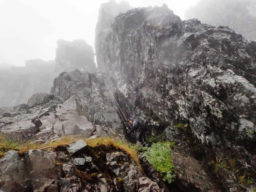 In pouring rain and with the support of expert climbers, botanist Dan Watson abseils down the Great Chimney on Tower Ridge where he finds a cluster drooping Saxifrage at the base.