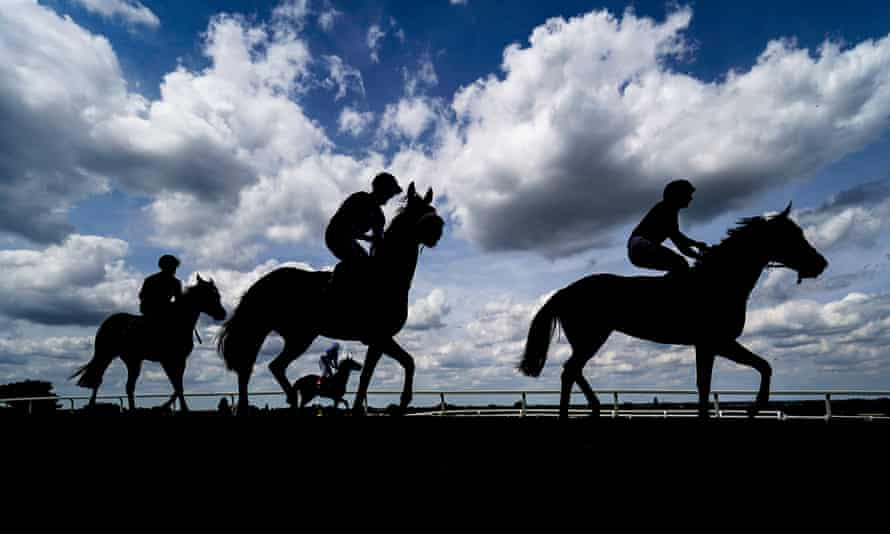 The rules of racing prohibit horses from being given anything on a raceday except normal feed or water by mouth.