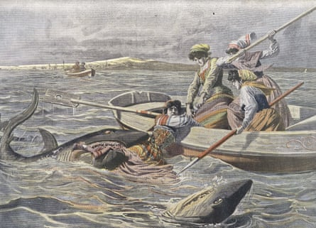 1908: Young girls on small boat attacked by the sharks in Adriatic Sea. Engraving