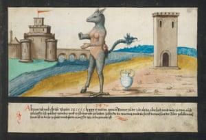 A Tiber monster in 1496