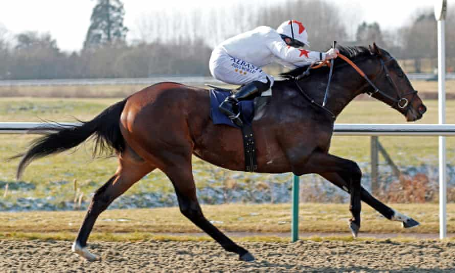 Walk In The Sun pictured winning at Lingfield in February.
