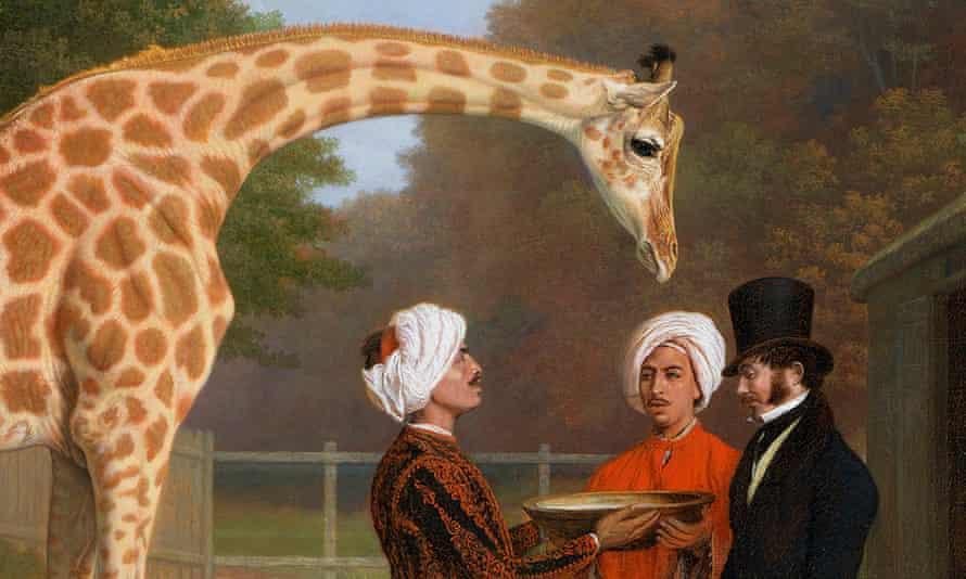 George IV's giraffe