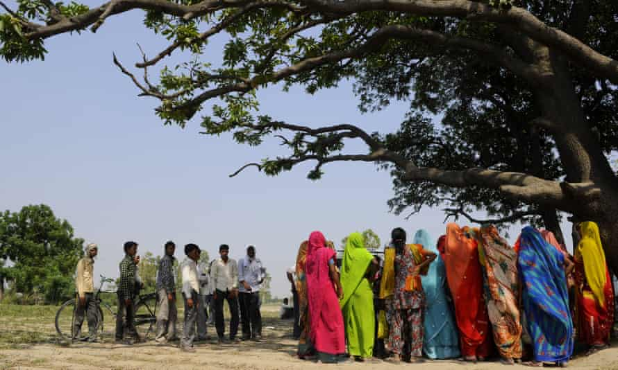 The mango tree in the village where two girls were raped and hanged by five men in Uttar Pradesh.