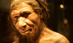 A reconstruction of a Neanderthal created for the Natural History Museum in London.