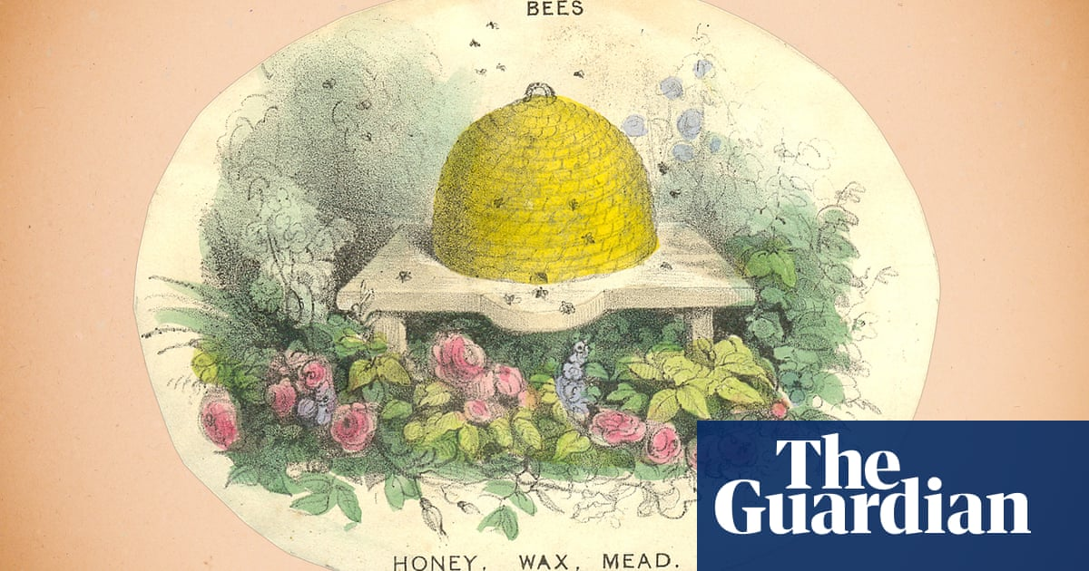 A bee: before it dies, its mouth opens and closes, kissing the ground