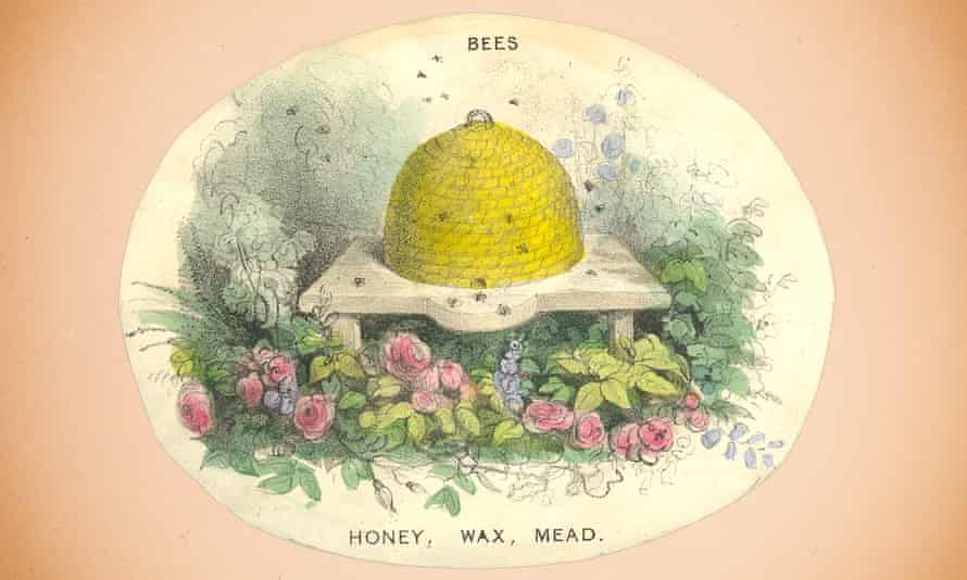 A hand-coloured lithograph illustrates the benefits of keeping bees (circa 1840).