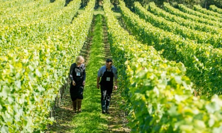 Wine producers Augusta and Robert Raimes in the Raimes vineyards in Hampshire.