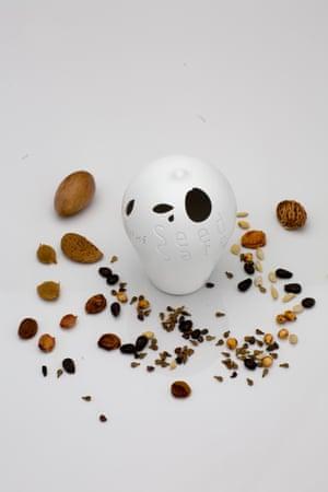 Seed Safe (2010)
