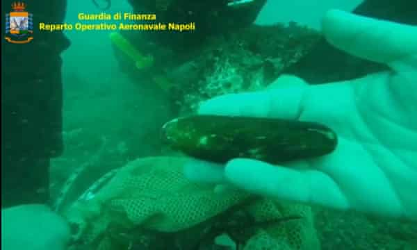 An Italian police diver with a date mussel illegally fished off Capri's Faraglioni rocks.