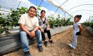 Oscar, Veronica and Brenda Hernandez on a farm in California.