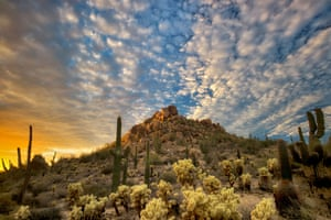 Target shooting in the Sonoran Desert national monument in Arizona is controversial.