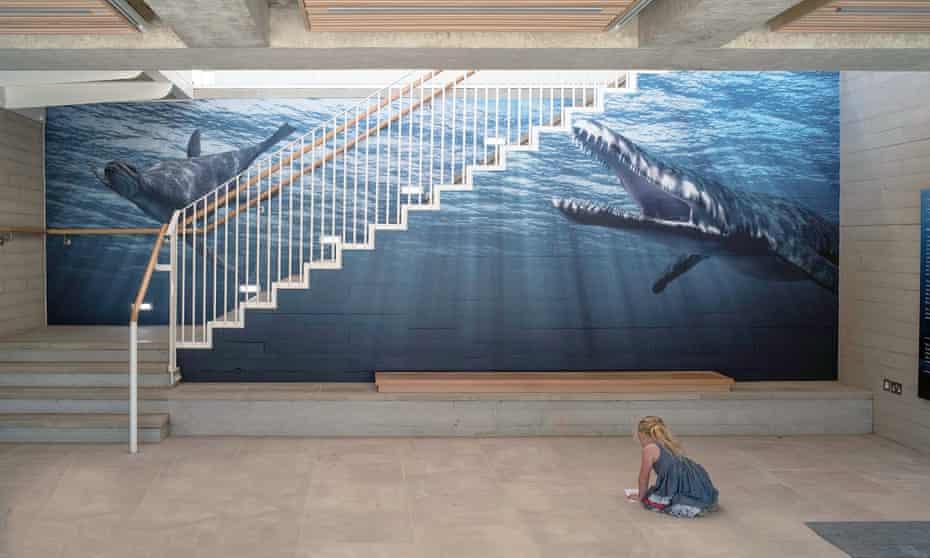 Inside the Museum of Jurassic Marine Life, Kimmeridge