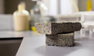 Urine bricks created by students at the University of Cape Town.
