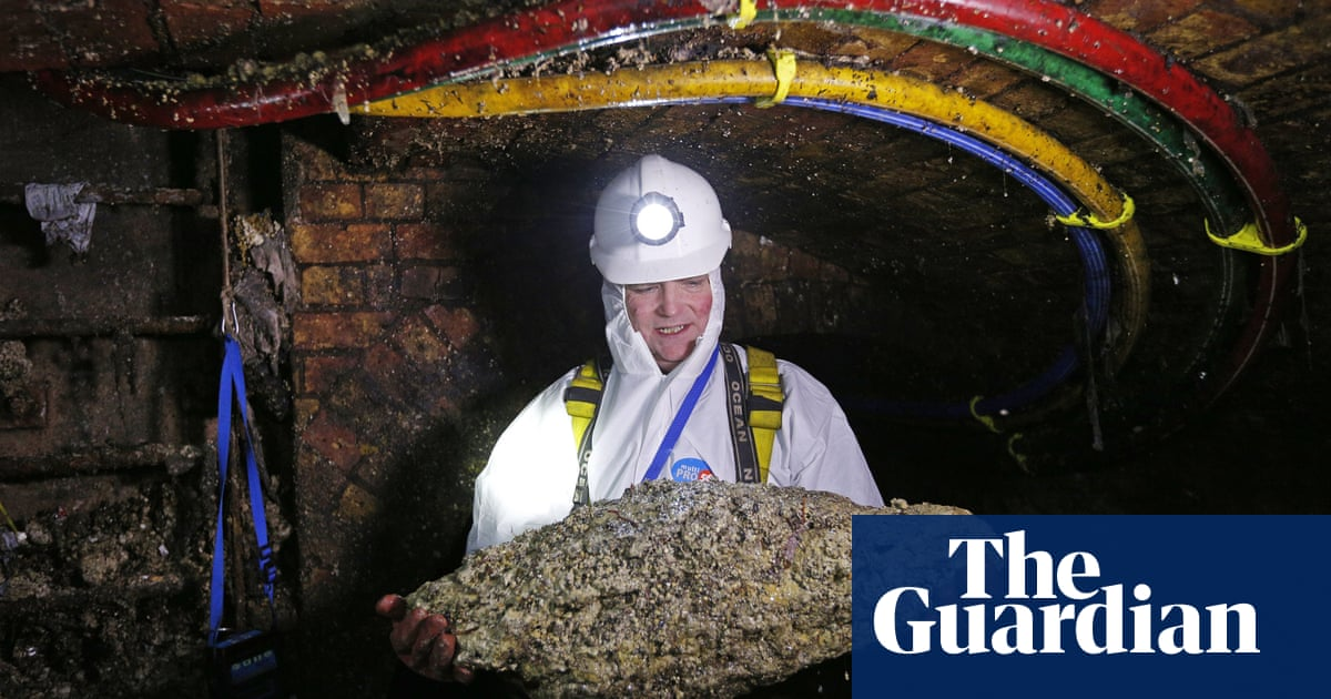 Don't feed the fatberg! What a slice of oily sewage says