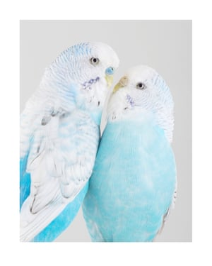 Rain and June. Photograph on archival fibre-based cotton rag paper, 2019 (dimensions variable).