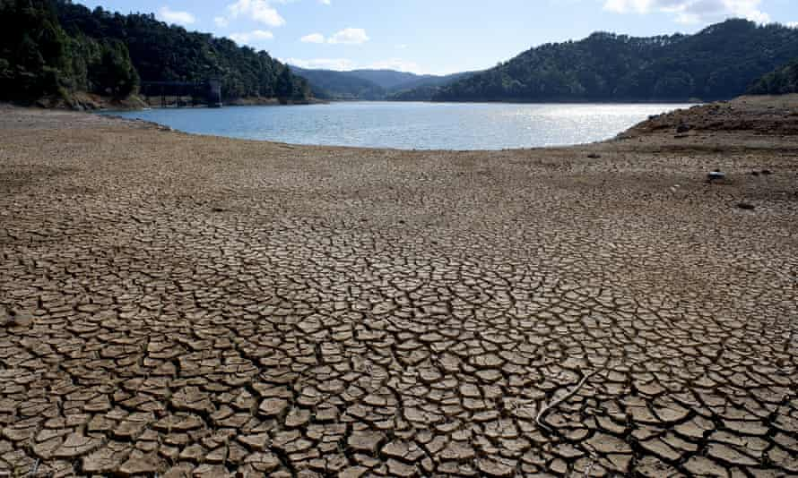 The Cosseys dam in the Hunua Ranges at about 50% capacity during a drought last year in Auckland