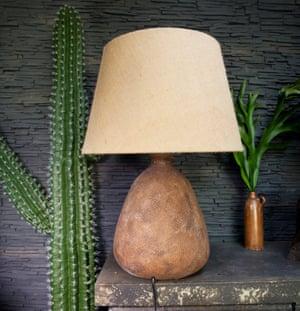 A large lamp next to a cactus