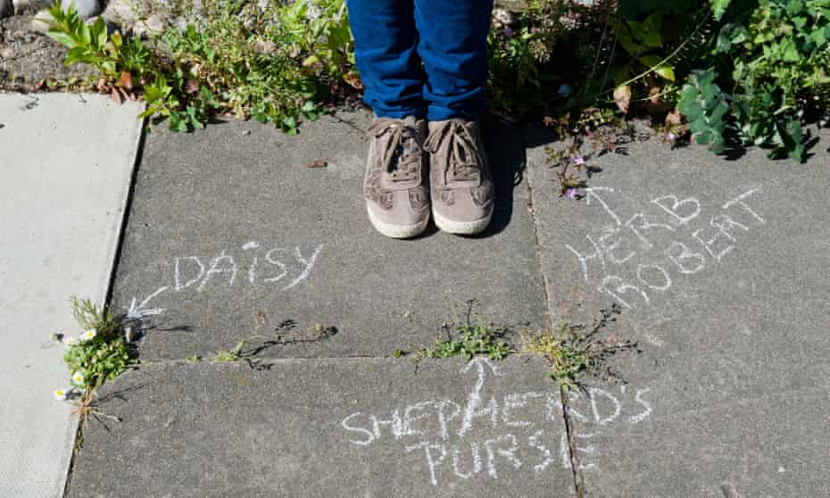 Sophie Leguil, founder of More Than Weeds, stands over chalk names of plants on the pavement.