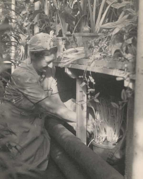 Constance Spry working in her greenhouse, c1942.