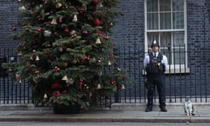 A police officer with Larry the cat in Downing Street last weekend, as Brexit talks head to a climax