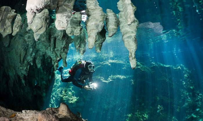 Scuba diving trips around the world: readers' tips | Travel | The