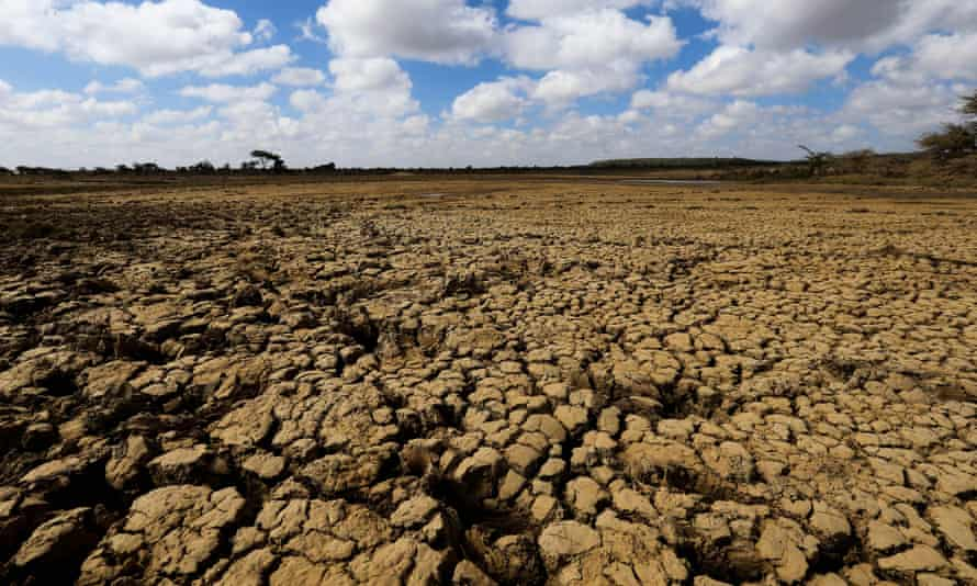 A dried-up pond in Laikipia