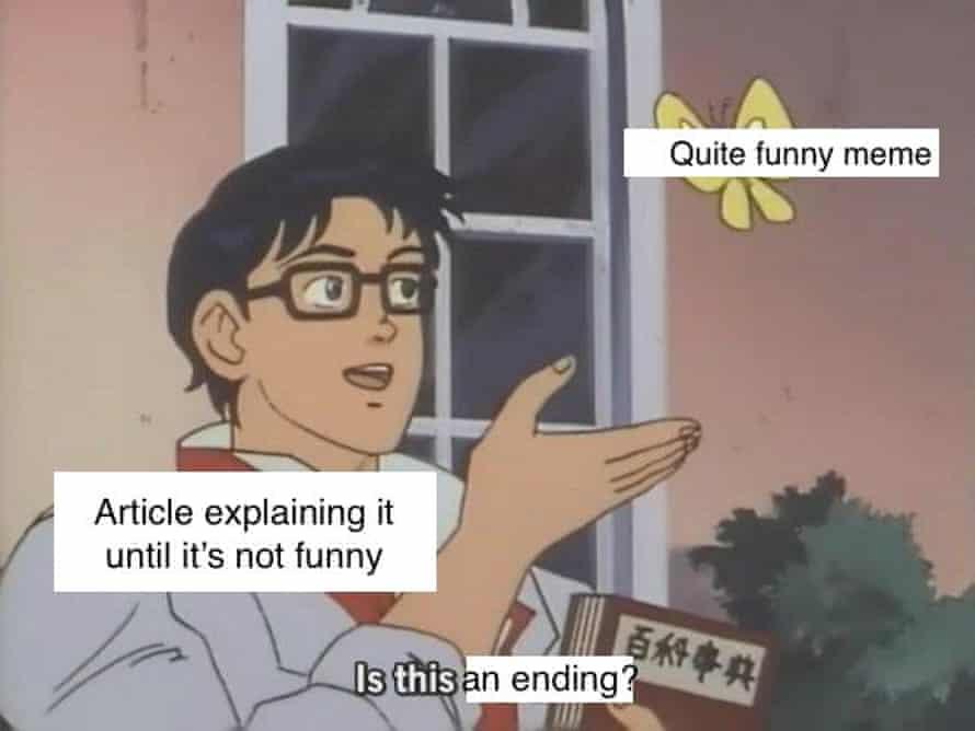 Butterfly Meme
