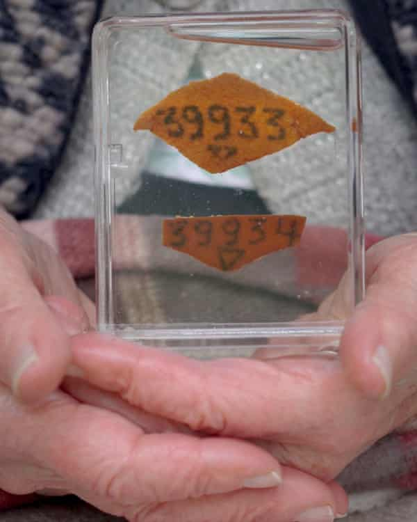 The preserved number tattoos of Kitty Hart-Moxon and her mother.