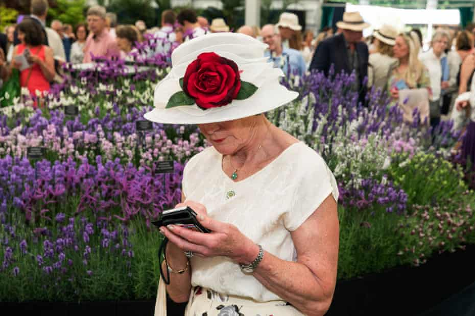 A woman in a hat bearing a rose studies her phone