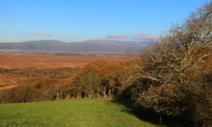 Below the pasture and autumn hedgerows, the low expanse of Cors Fochno.