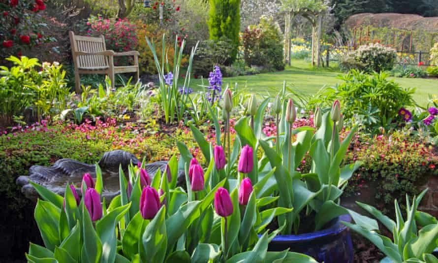 A garden is far more than just a much-loved physical space – it is a mental space.