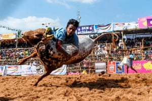 Palamedu, India A participant jumps trying to control a bull during the annual bull taming 'Jallikattu' festival on the outskirts of Madurai in the southern Indian state of Tamil Nadu